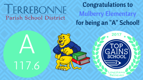 Mulberry A Report Card 16-17.png